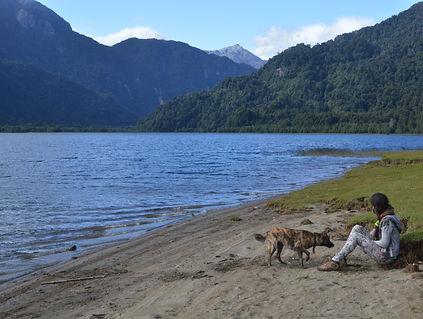 Trekking Laguna Cayutué, Parque Vicente perez Rosales