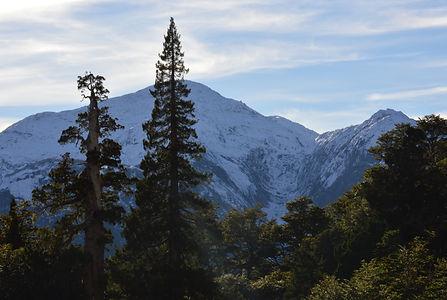 Cerro Trinidad, La Junta, Valle de Cochamó