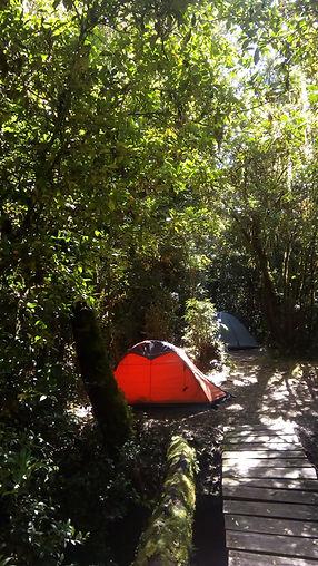 Camping, Trekking, Hostal B&B, Valle de Cochamó, inicio del sendero a La Junta, alojamiento, hospedaje