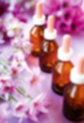 Flores de Bach en el valle de cochamo, terapias alternativas
