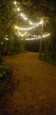String Lighting on Walking Paths