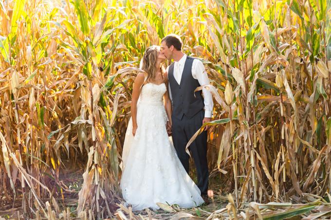 Corn field photo op