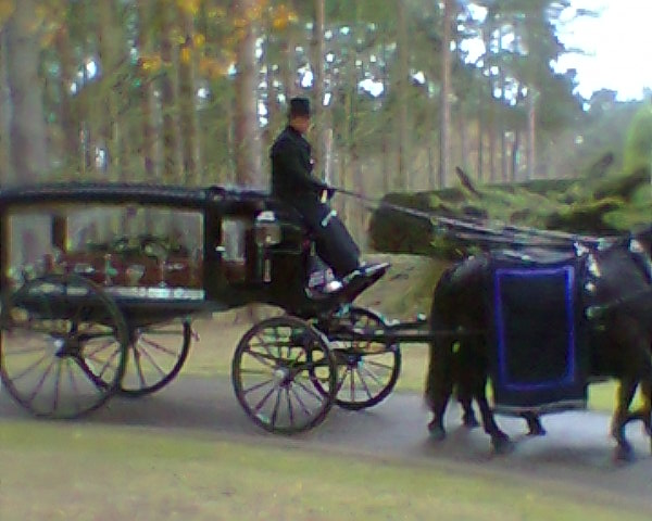 At Mintlyn Crematorium