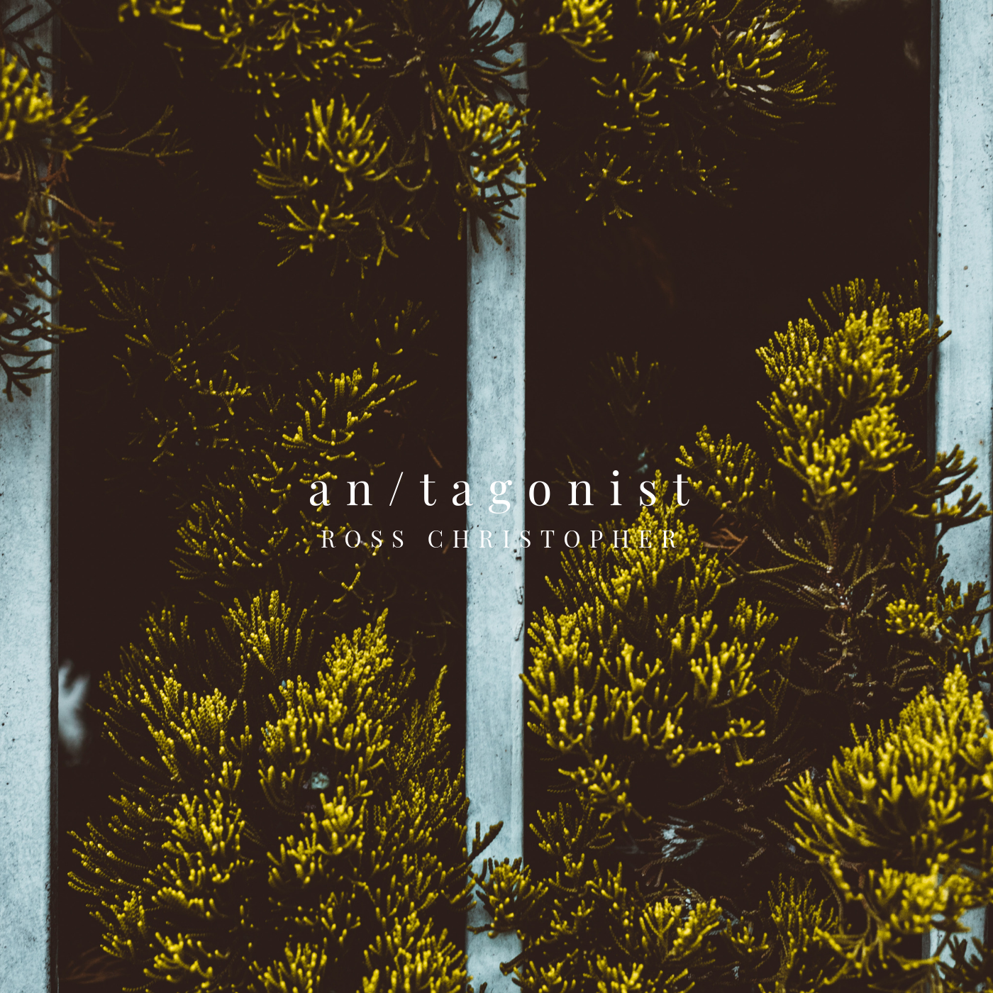 an_tagonist ALBUM COVER