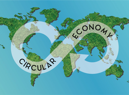 How Embracing Circularity Can Help Your Business Earn a Profit