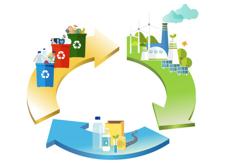 Why Embracing the Circular Economy Concept is Beneficial For Business Owners
