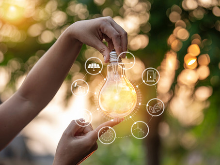 Why Having a Sustainability Strategy is a Must For Modern Businesses