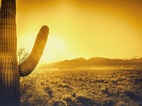 Fiberglass Entry Doors Are Best for Arizona Heat