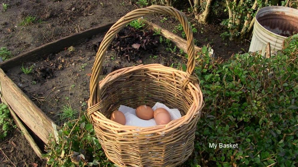 steves basket 2.jpg
