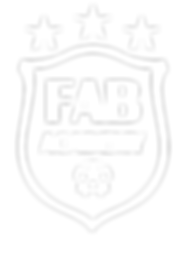 Fab_Academy_logo_whiteout.png 2016-1-11-