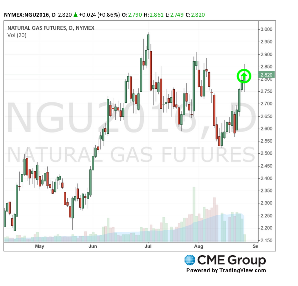 CME Natural Gas Futures 8-25-16 (CMEGroup.com)