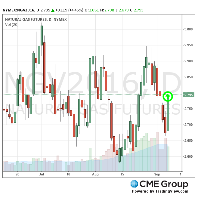 CME Natural Gas Futures 9-8-16 (CMEGroup.com)