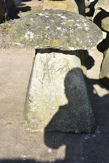 Limestone Staddle stone