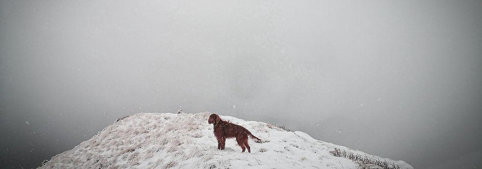 Winter landscape Nanos Plateau Slovenia