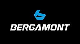 bgm_logo_negativ_rgb.png