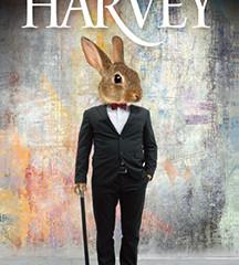 Harvey | Directing Announcement