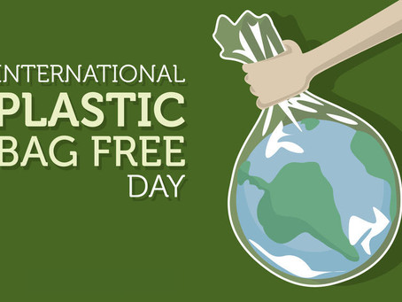 Happy International Plastic Bag Free Day!
