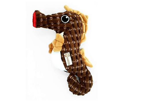 Seahorse Toy (May 2021)