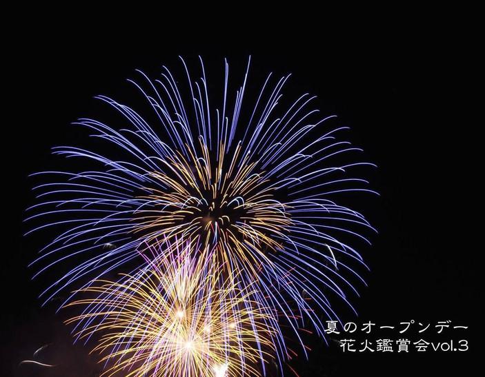 夏のオープンデー花火鑑賞会 開催!