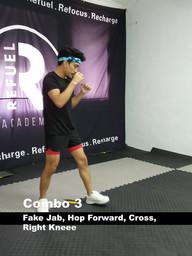 Muay Thai Technique Week 8.mp4