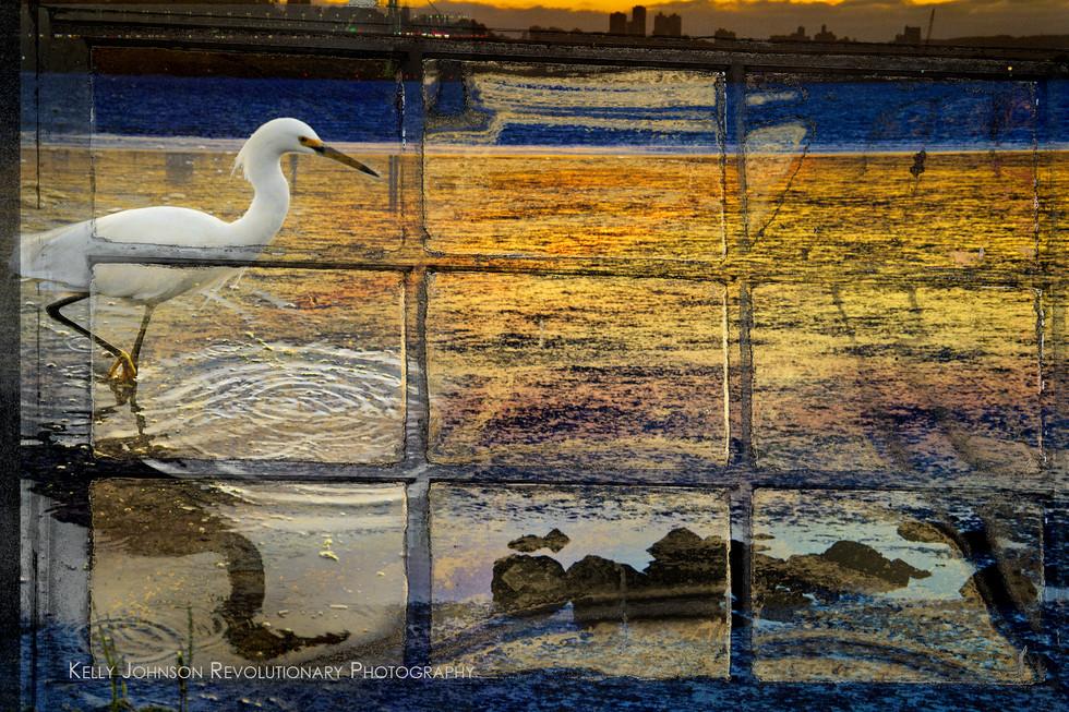 egrit sunset2_4775.jpg