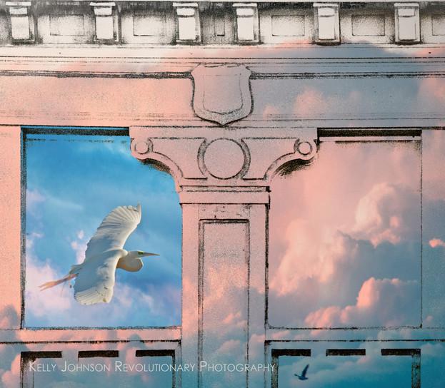 bay window 9.jpg