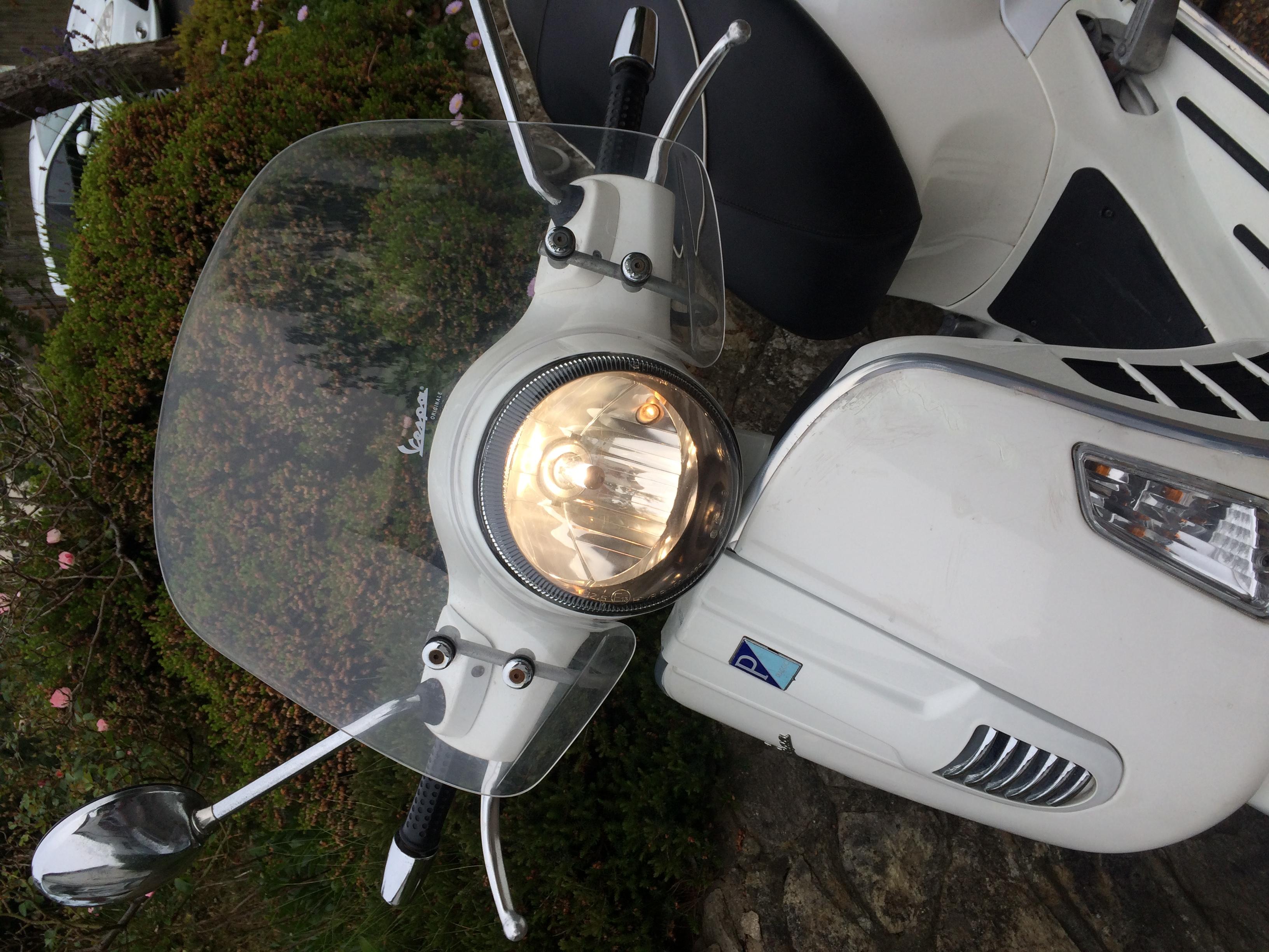 VGTS300 Windscreen