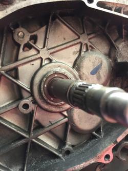 Driven input shaft