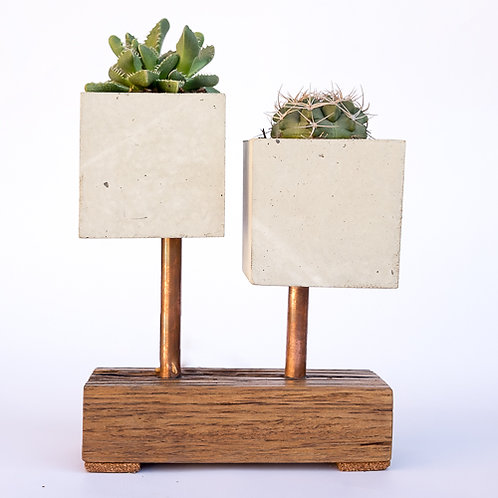 Two Cube Planter