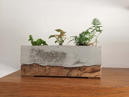 Indoor Planter with wood base