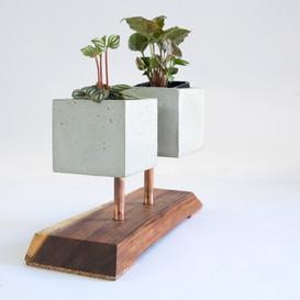 Japandi Planter. Cement, wood, and copper.  Zen and Cement, Marrickvile, Australia