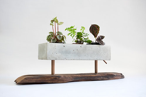 Planter with Copper and Wood Base