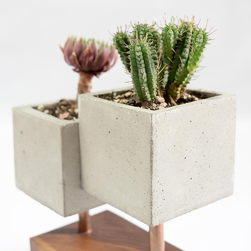 Indoor Planter with Copper and Wooden Base
