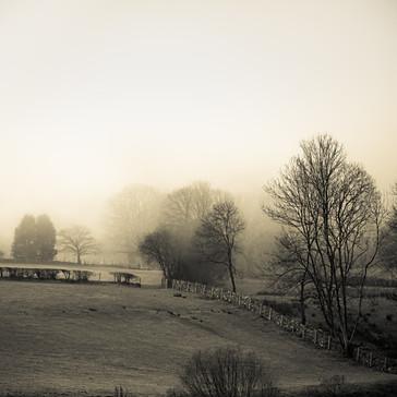 Landscapes16.jpg
