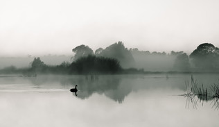 By The Lake-6.jpg