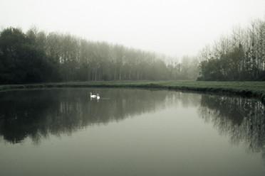 By The Lake-10.jpg