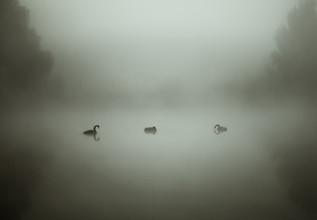By The Lake-2.jpg
