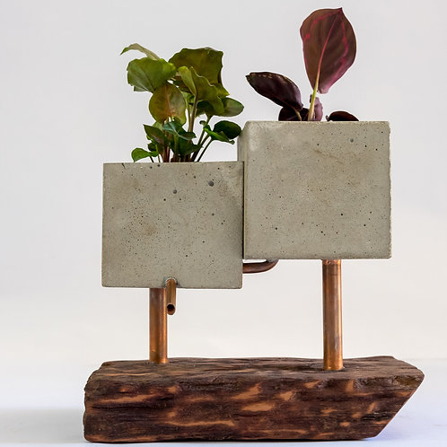 Indoor Planter with Copper and Wood Base