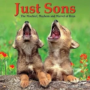 Just Sons HC The Mischief, Mayhem and Marvel of Boys by Melissa Sovey