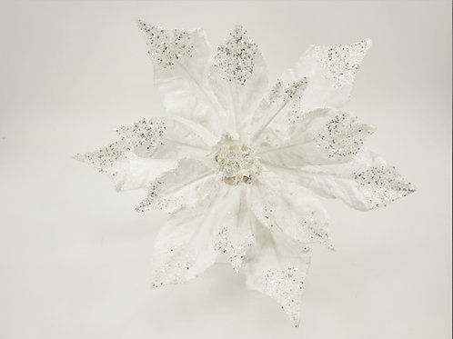 POINSETTIA 4XL PICK WHITE WITH A SPARKLE OF GLITTER