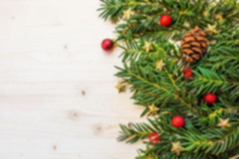 berry-branch-christmas-christmas-balls.j