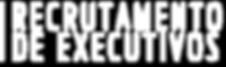 Audens Recrutamento de Executivos