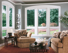 window-replacement-with-fixed-picture-windows-plus-clear-glazing-and-wooden-frames-in-living-room-with-sofas-and-wooden-tables.jpg