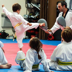 Little Dragons Taekwondo Martial Art