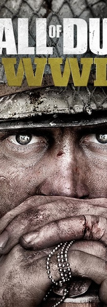 Call of Duty WWII.jpg
