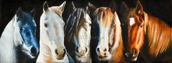horses01.png