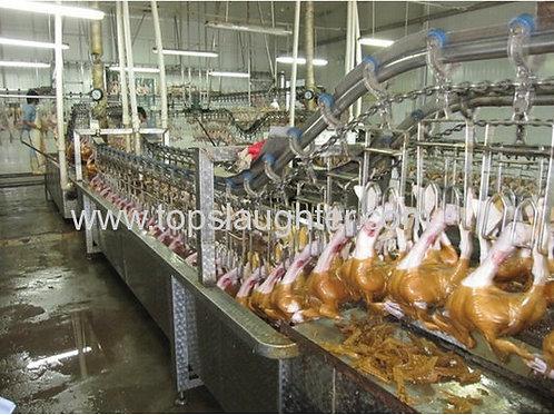 Ducks Processing Equipment Waxing Process