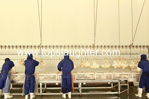 Chicken Processing Plants Food Processing Equipment