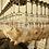 Thumbnail: Chicken slaughter equipment conveyor