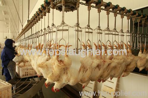 Chicken slaughter equipment conveyor